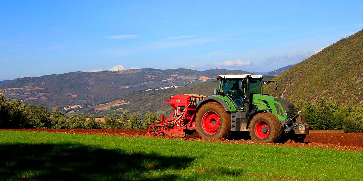 azienda-agricola-piconi-07_slide